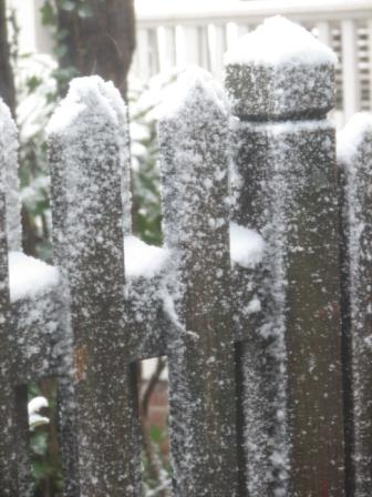Snow Day fence