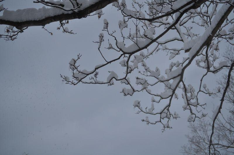 Christmas Snow Cling 2